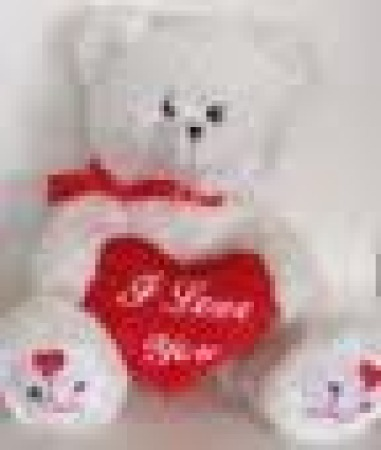 White Valentines Teddy