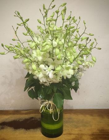 Elegant Orchid Vase