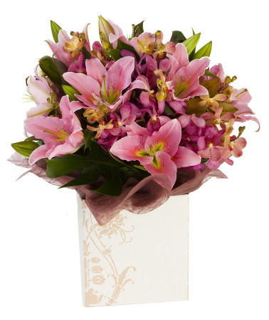 Ravishing... Posy of pink Lily. In a box or as a Bouquet