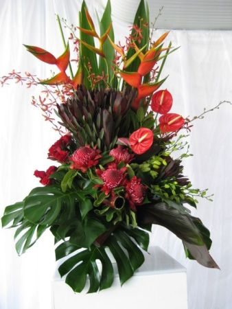 Special Display for home or Corporate display