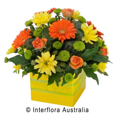 Happy Box of flowers